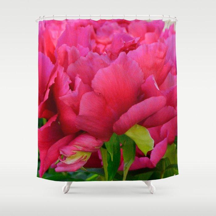 Dark Pink Tree Peony by Teresa Thompson Shower Curtain