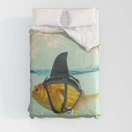 Brilliant Disguise Test Comforters