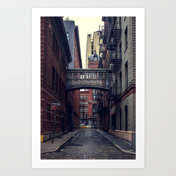 Hidden Gem Art Print