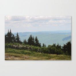 Mount Greylock IV Canvas Print