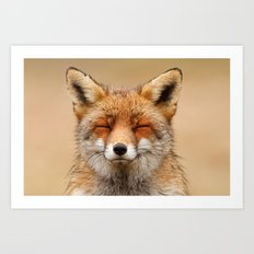 Zen Fox (Red Fox smiling) Art Print