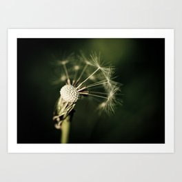 Blown Away Art Print