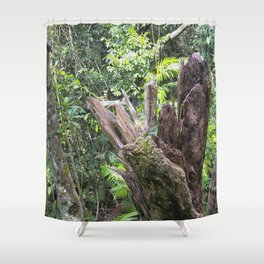 A cyclone damaged tree in the rain forest Shower Curtain