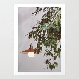 Lamp & Plant Art Print