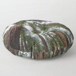 Redwood Forest Adventure VI - Nature Photography Floor Pillow