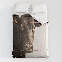How Now, Brown Cow? Comforters