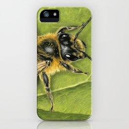 Honeybee On Leaf iPhone Case