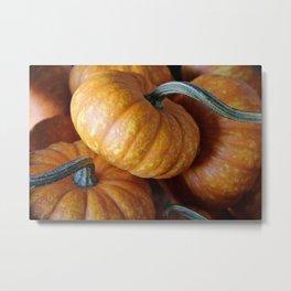 Perfect Pumpkins Metal Print