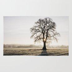 Sunrise behind a tree on a frosty morning. Norfolk, UK. Rug