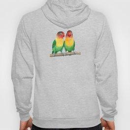 Fischer's lovebirds Hoody