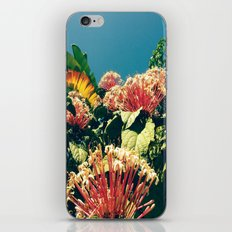 Badfish iPhone & iPod Skin