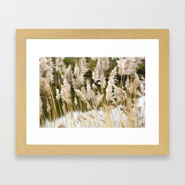 Canal side grass Framed Art Print