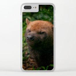 Bush Dog Clear iPhone Case