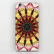 Tribal Spears and Fading Hearts Mandala iPhone & iPod Skin