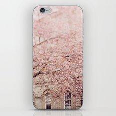 Cherry Blossom. iPhone Skin