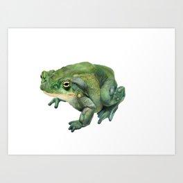 Mr. Toad Art Print