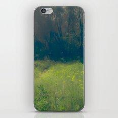 Greenbelt iPhone & iPod Skin