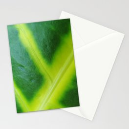 Blown up Leaf Stationery Cards