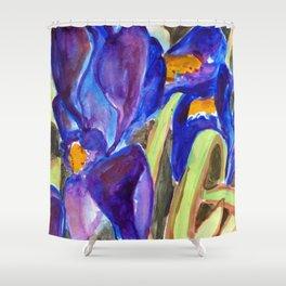 Dwarf Irises Shower Curtain