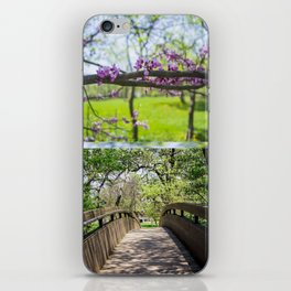 Bridges and Branches iPhone Skin