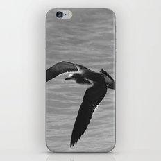 Flight Transitions iPhone & iPod Skin