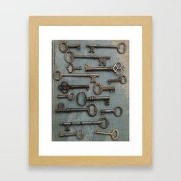 Vintage Skeleton Key Collection Framed Art Print