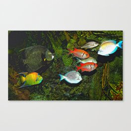 At the Aquarium Canvas Print