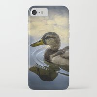 duck iPhone & iPod Cases featuring Duck by B.P.