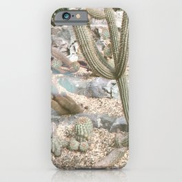 Cacti II iPhone Case