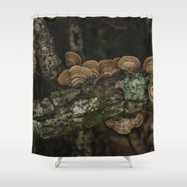 Thoughtful and Deep - Mushrooms in Forest I Shower Curtain