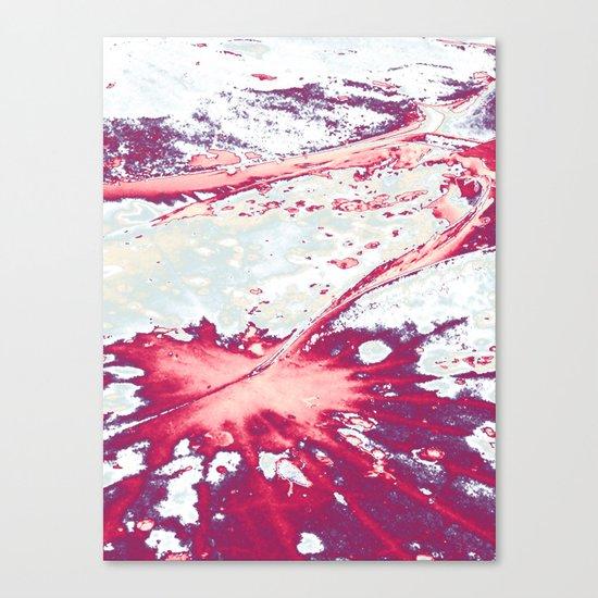 Petiole Canvas Print