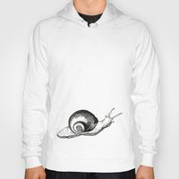 snail Hoodies featuring Snail by Aubree Eisenwinter