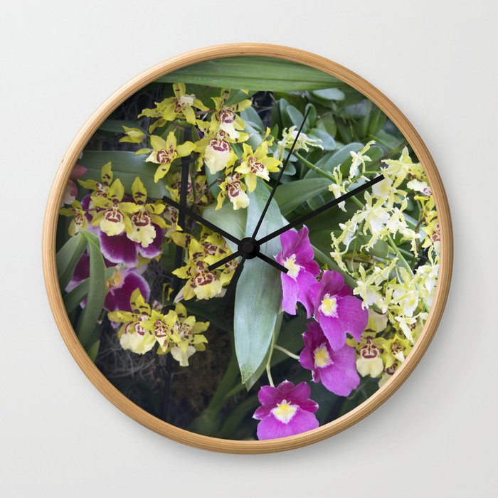 Longwood Gardens Orchid Extravaganza 67 Wall Clock