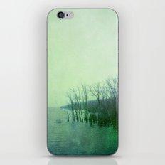 Inner Journey - Blue iPhone & iPod Skin