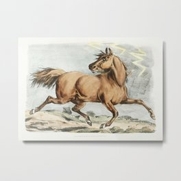 Illustration of a brown horse running from Sporting Sketches (1817-1818) by Henry Alken (1784-1851). Metal Print