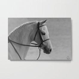 Pony perfection Metal Print