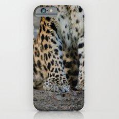 Paws Slim Case iPhone 6s