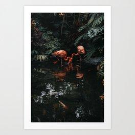 Flamingo II Art Print