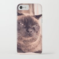 cookie iPhone & iPod Cases featuring Cookie by Rachel's Pet Portraits