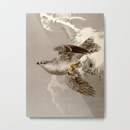 Hawk Holding a Small Bird Metal Print