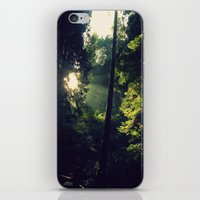 spiritual iPhone & iPod Skins featuring Spiritual by LilyMichael Photography