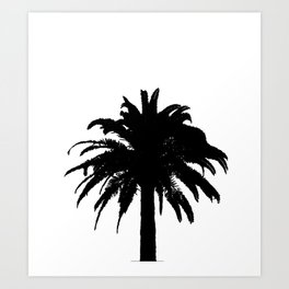Black and white palm tree Art Print