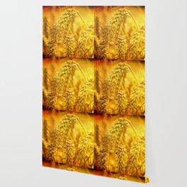 Bread of Life Wallpaper