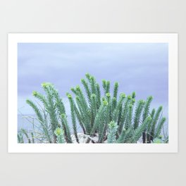 the softness of the dunes Art Print