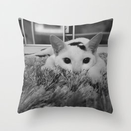kitty ready to pounce Throw Pillow