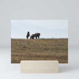 Standing Cinnamon Black Cub with mother and sibling at Pryor Mountain Mini Art Print