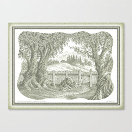 ONCE UPON A EUCALYPTUS VINTAGE PEN DRAWING Canvas Print