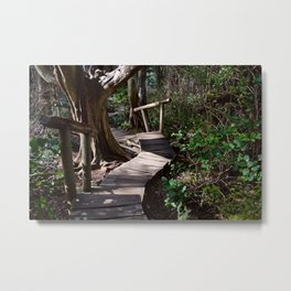Rainforest Boardwalk with Steps Metal Print