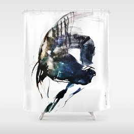 Horse (Dreamer) Shower Curtain