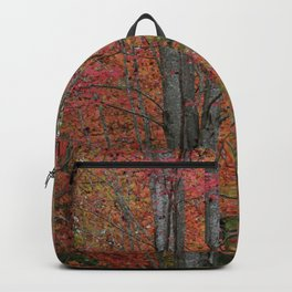 Fall Tree - Red - Square Backpack
